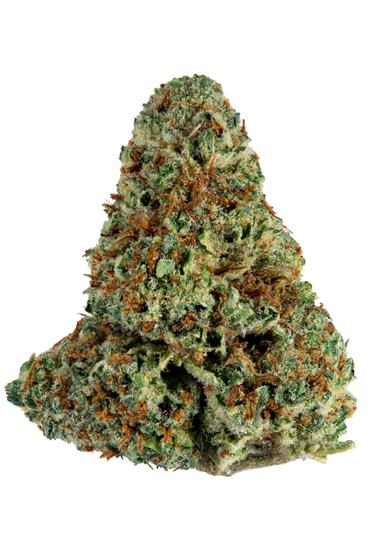 Electric Ginger - Sativa Cannabis Strain