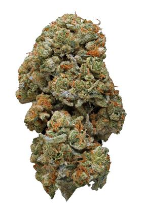 Face Off OG - Indica Cannabis Strain