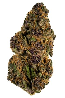 Forbidden Fruit - Hybrid Cannabis Strain