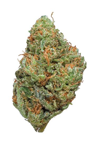 Fruit Spirit - Hybrid Cannabis Strain