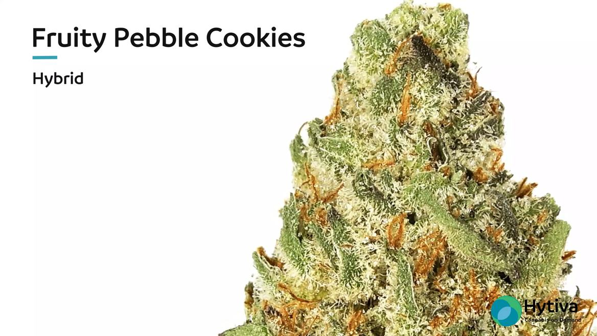 Strain review video: Fruity Pebble Cookies
