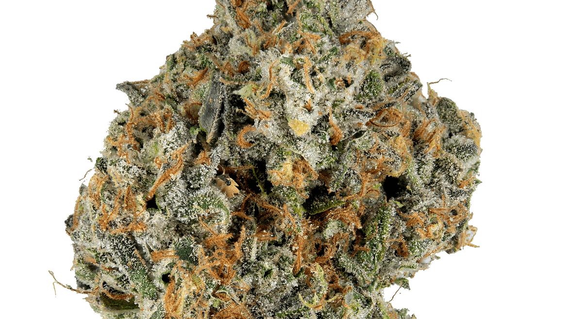 Funky Malawi Strain - Sativa Cannabis Video, Terpenes : Hytiva