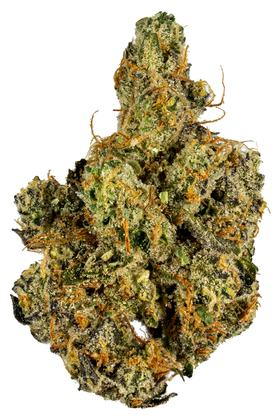 Garlic Cookies - Hybrid Cannabis Strain