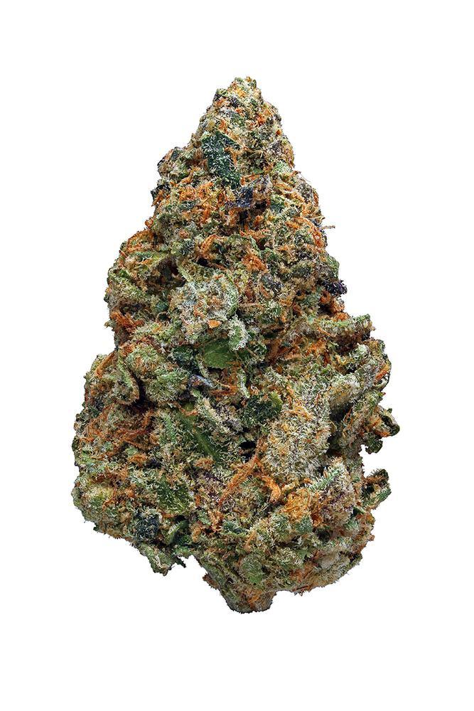 Gelato Cookies Strain Hybrid Cannabis Video Review Hytiva