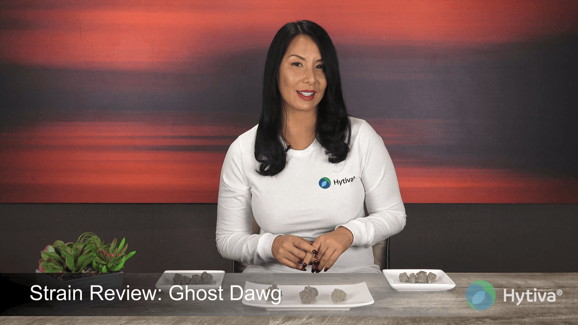 Strain review video: Ghost Dawg
