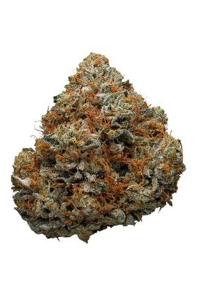 Godfather OG - Indica Cannabis Strain