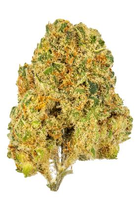 Golden Dream - Hybrid Cannabis Strain