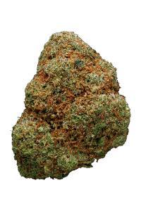Golden Goat - Hybrid Cannabis Strain