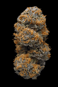 Grandaddy Purple - Indica Cannabis Strain
