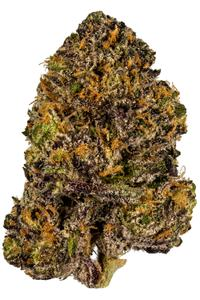 Granddaddy Purple - Indica Cannabis Strain