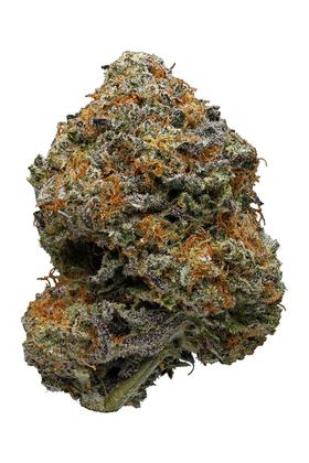 Grape God - Hybride Cannabis Strain