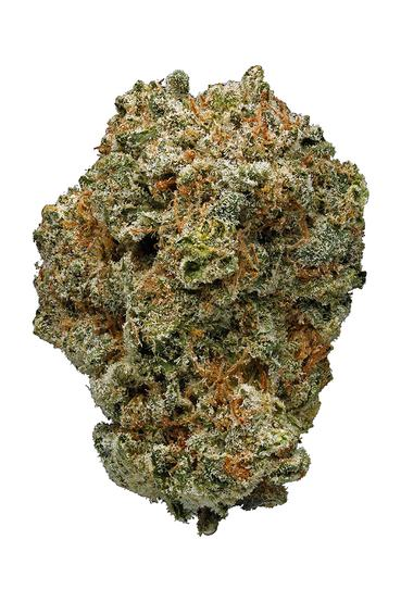 Grape Stomper - Hybrid Cannabis Strain