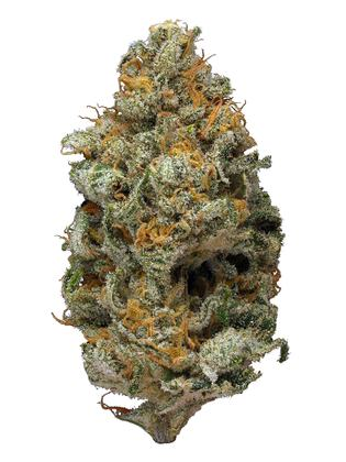 Green Lights - Híbrido Cannabis Strain