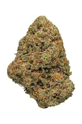 Green Queen - Híbrido Cannabis Strain