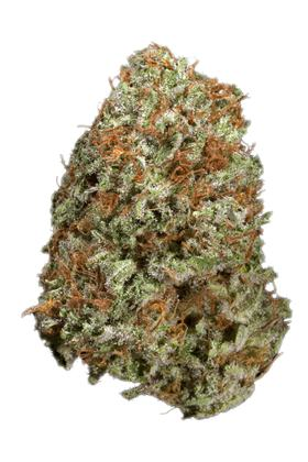 Hawaii 5-0 - Hybrid Cannabis Strain