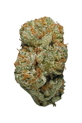Hawaiian Snow - Sativa Cannabis Strain