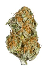 Hawaiian - Sativa Cannabis Strain