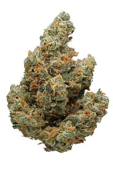 Hawgs Breath - Hybrid Cannabis Strain