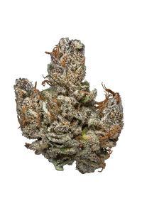 Hindu Kush - Indica Cannabis Strain