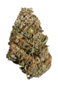 Hindu Skunk - Sativa Cannabis Strain