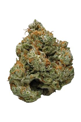Hog's Breath - Indica Cannabis Strain
