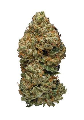 Holy Ghost - Hybrid Cannabis Strain