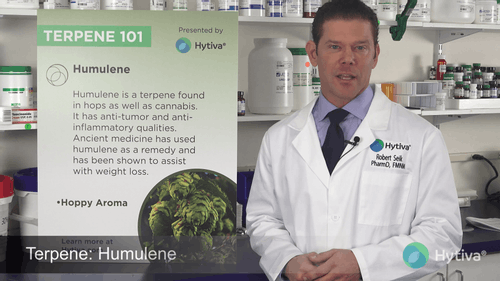 Humulene : Know Your Terpenes