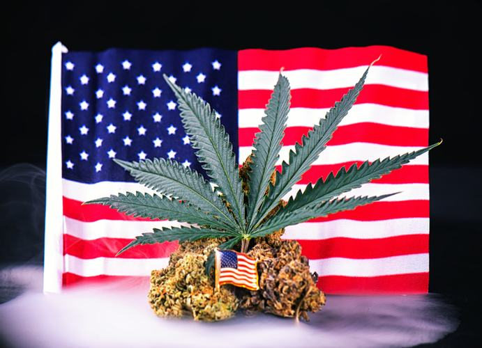 5 Ways Veterans Can Use Cannabis to Improve Quality of Life