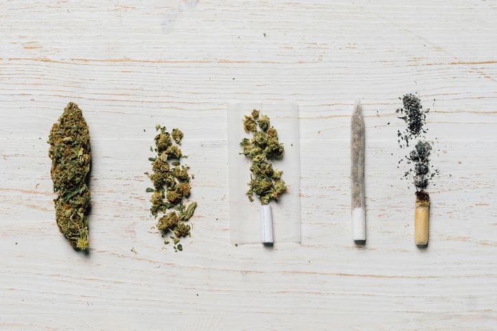 7 Brilliant Ways to Break Bud Without a Grinder