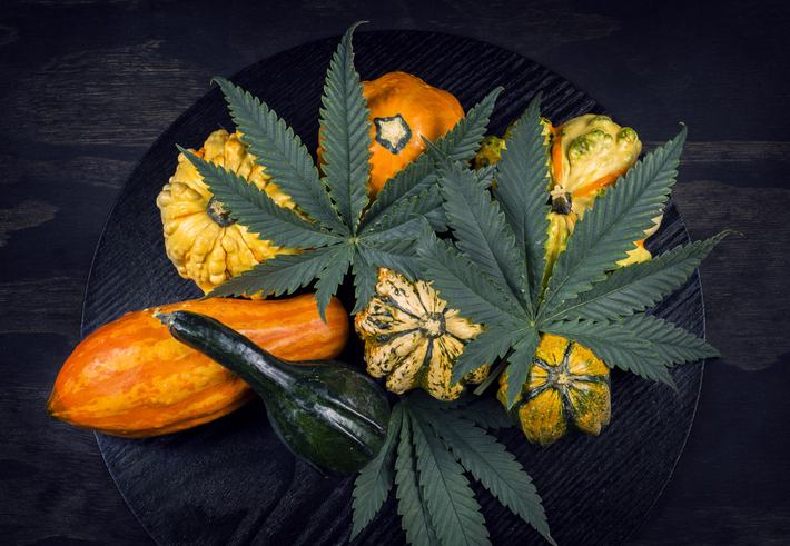 Use Cannabis to Stimulate Your Appetite in Vegas for a Thanksgiving Feast