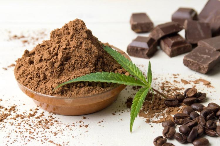 DIY: Cannabis-Infused Milk Chocolate