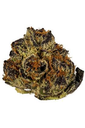 Ice Cream Cake Strain - Indica Cannabis Video, THC, Terpenes