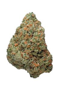 Ingrid - Indica Cannabis Strain