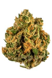 Island Sweet Skunk - Sativa Cannabis Strain