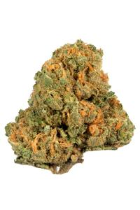 Jack Herer - Hybrid Cannabis Strain