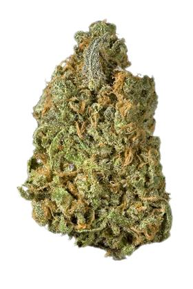 Jack's Dream - Híbrido Cannabis Strain