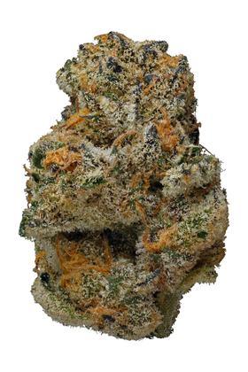 Jenny Kush Strain - Hybrid Cannabis Review, CBD, THC, Terpenes : Hytiva