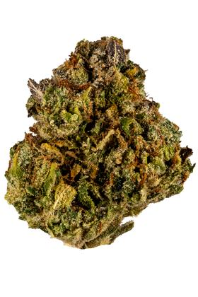 Johnny Chimpo - Hybrid Cannabis Strain