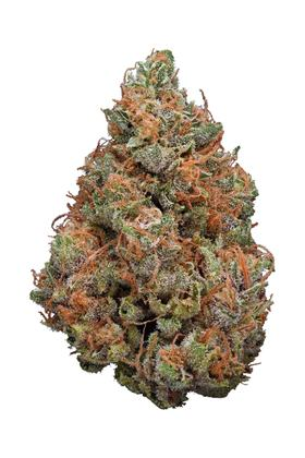 Killer Grape - Híbrido Cannabis Strain