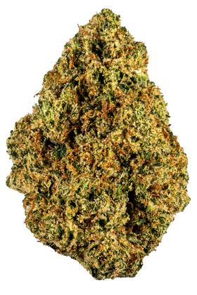 King Tut - Sativa Cannabis Strain