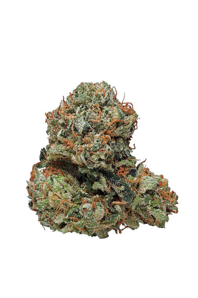 Kosher Kush Strain - Indica Cannabis Video, CBD, THC, Terps : Hytiva