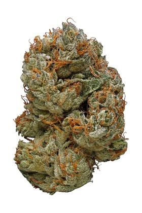 LA Cheese - Hybrid Cannabis Strain