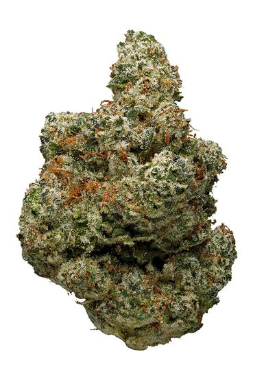Lake Of Fire - Hybrid Cannabis Strain