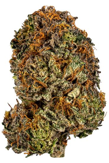 Lavender Jones - Hybrid Cannabis Strain