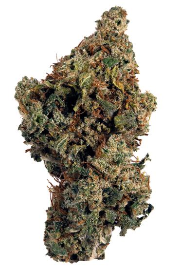 Lemon Head - Hybrid Cannabis Strain