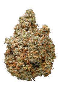 Lemon Kush - Hybrid Cannabis Strain