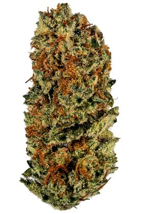 Lemon Meringue - Sativa Cannabis Strain