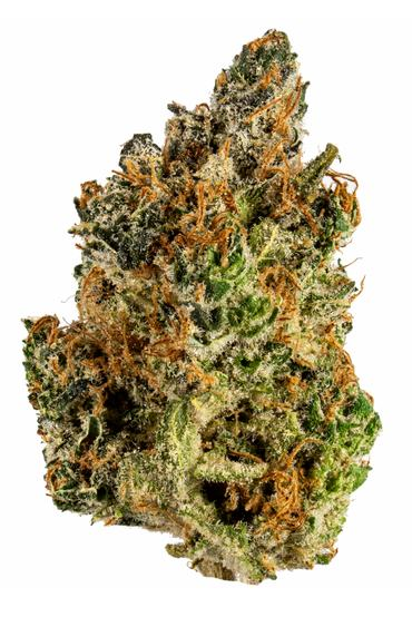 Lemonade Dream - Hybrid Cannabis Strain