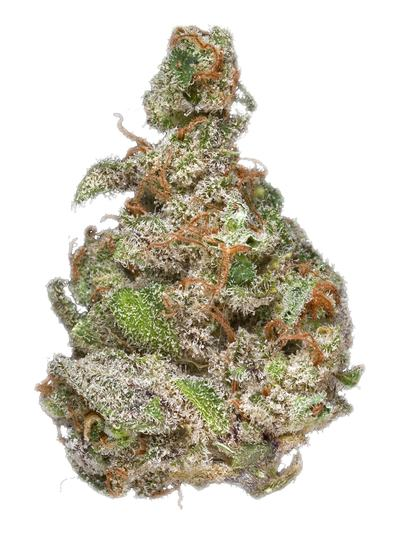 Lemonberry - Hybrid Cannabis Strain