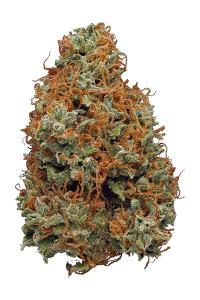 Liberty Haze - Hybrid Cannabis Strain